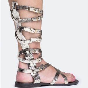 Steve Madden- Rivval Gladiator Sandals